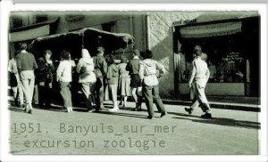 Banuyls 1951